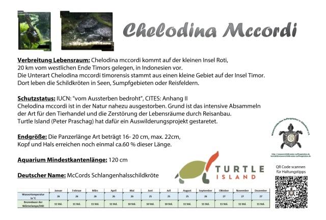 Aquariumschild für Chelodina Mccordi mit wichtigen Infos