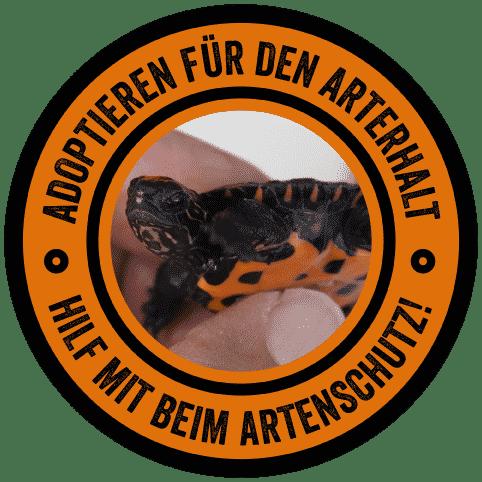 Adoptieren für den Arterhalt. Hilf mit beim Artenschutz