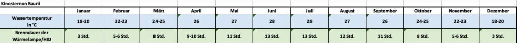 Angaben für jeden Monat zu Temperatur und Beleuchtung Kinosternon Baurii Dreistreifen Klappschildkröte Temperaturtabelle Temperaturen Brenndauer Leuchtdauer Monate Jahresrhytmus