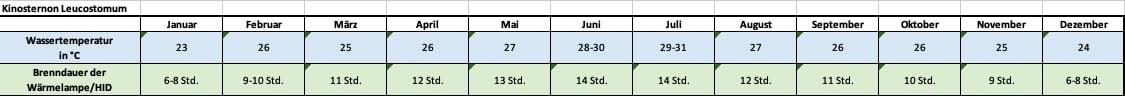 Angaben für jeden Monat zu Temperatur und Beleuchtung Kinosternon leucostomum Weißmaul Klappschildkröte Temperatur Temperaturtabelle Brenndauer Leuchtdauer HQI HID Metalldampflampe Monats-Rhythmus