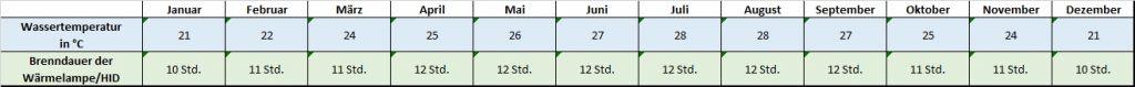 Angaben für jeden Monat zu Temperatur und Beleuchtung Mauremys annamensis Annam Sumpfschildkröte Temperatur Temperaturentabelle Brenndauer Leuchtdauer HQI HID Metalldampflampe
