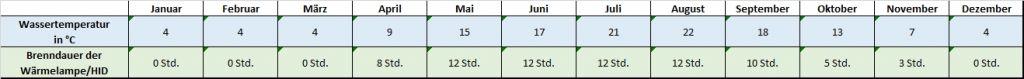 Angaben für jeden Monat zu Temperatur und Beleuchtung Mauremys caspica Kaspische Bachschildkröte Temperaturtabelle Temperatur Brenndauer Leuchtdauer HQI HID Metalldampflampe