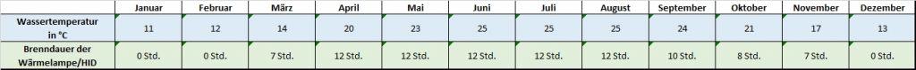 Angaben für jeden Monat zu Temperatur und Beleuchtung Mauremys nigricans - Chinesische Rothalsschildkröte Temperatur Temperaturtabelle Brenndauer Leuchtdauer HQI HID Metalldampflampe Monatsrythmus