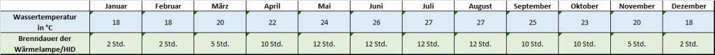 Angaben für jeden Monat zu Temperatur und Beleuchtung Pseudemys nelsoni Florida-Rotbauch-Schmuckschildkröte Temperatur Temperaturtabelle Leuchtdauer Brenndauer HQI HID Metalldampflampe Monatsrythmus