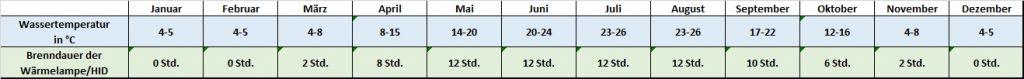 Angaben für jeden Monat zu Temperatur und Beleuchtung Trachemys scripta elegans - Buchstaben-Schmuckschildkröten - Rotwangen-Schmuckschildkröte Temperatur Temperaturtabelle Brenndauer Leuchtdauer HQI HID Metalldampflampe