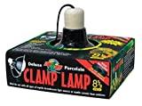 clamp lamp für Wasserschildkröten Lampen