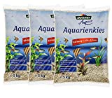 Aquarienkies für Wasserschildkröten Aquarium